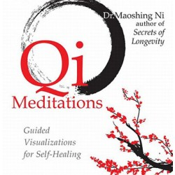 Qi Meditations 2 CD
