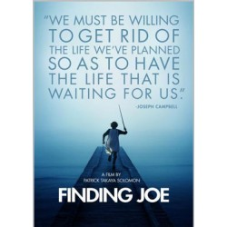 Finding Joe DVD
