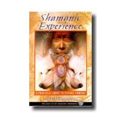 Shamanic Experience
