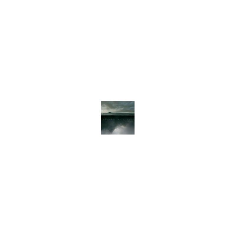 Dynamic Stillness 2 CD